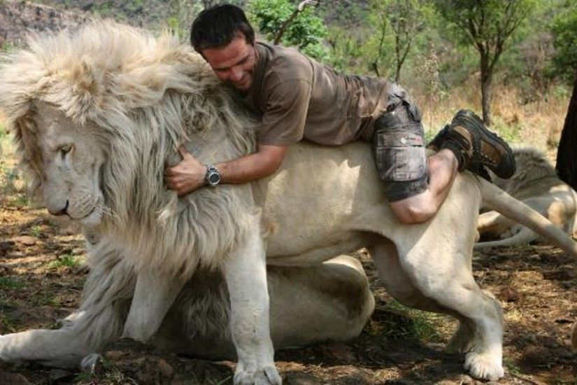 south-africa-white-lion-beautiful-hd-free