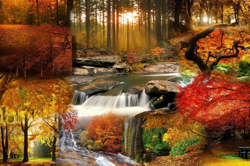 Beautiful Fall Landscape Wallpaper - Tera Wallpaper