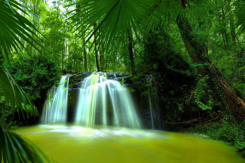 Beautiful Nature Waterfall Green Forest HD Wallpaper. Search more high .