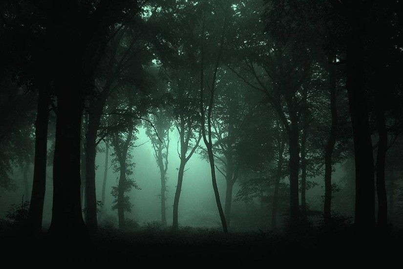Dark Forest Wallpaper Mobile