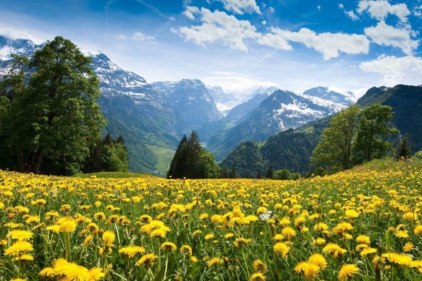 1920x1200 The-Scene-of-Alps-Mountain-See-Both-Summer