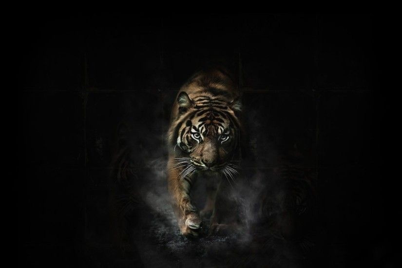 tiger 3d art hd wallpapers free download at http gethdwallpaper com