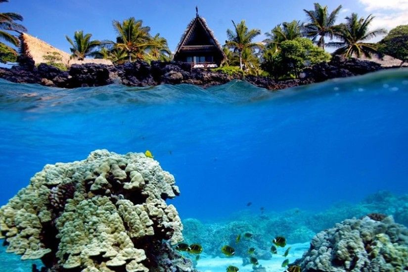 underwater shot of coral reef and beach hut 3000x1686 wallpaper