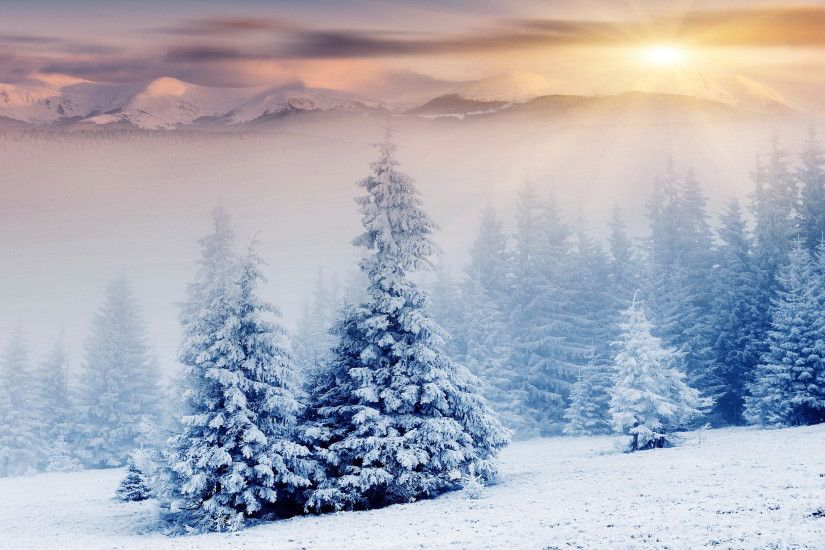 snow wallpaper sunrise. Â«Â«