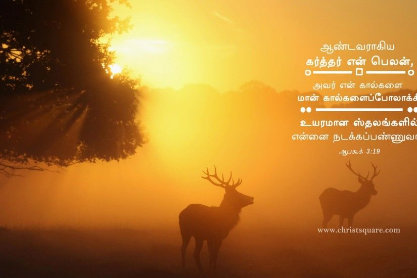 Jesus Christ Wallpaper With Bible Verse In Tamil - Ma-aM