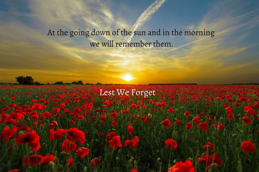 HD Wallpaper | Background ID:694194. 3089x2040 Holiday Anzac Day