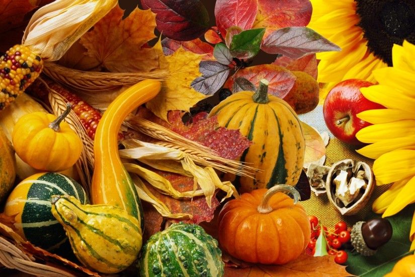 Gourds Tag - Autumn Vegetables Fall Pumpkin Nuts Leaves Garden Apples  Harvest Squash Sunflowers Acorns Gourds