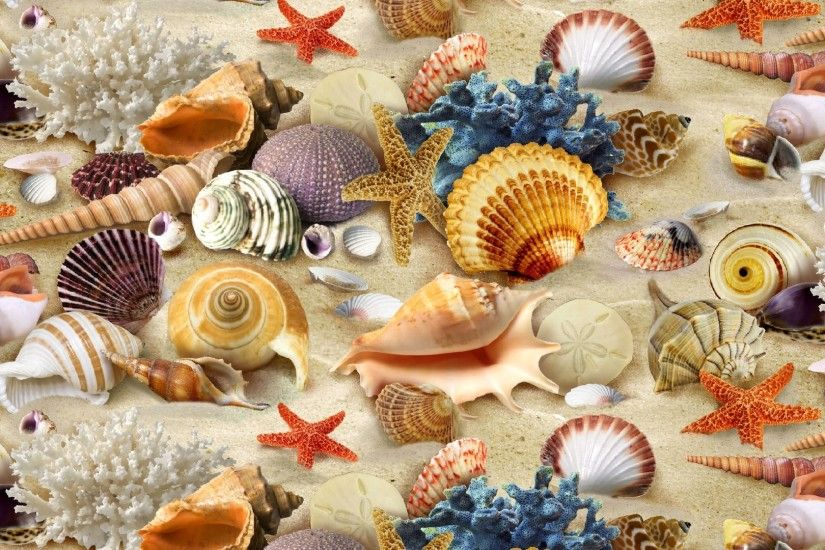 Seashell, coral, starfish, sand wallpaper:
