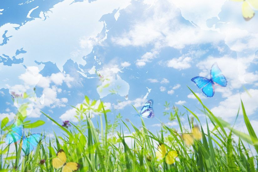 Pink Butterfly Backgrounds Wallpaper 1366×854 Butterfly Images Wallpapers  (36 Wallpapers) | Adorable