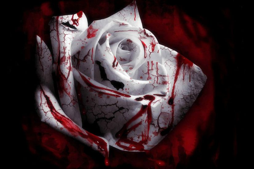 1920x1080 Bloody White Rose Wallpaper White.roses.by.
