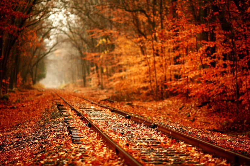 Beautiful autumn wallpaper 1920x1080.