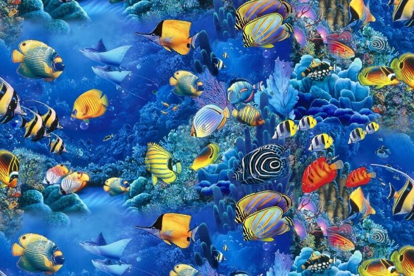 gorgerous fish wallpaper 1920x1200 picture