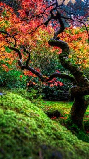Japanese Garden Wallpapers ·① WallpaperTag