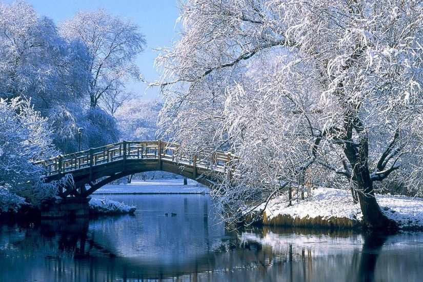 Winter Nature Wallpapers Free