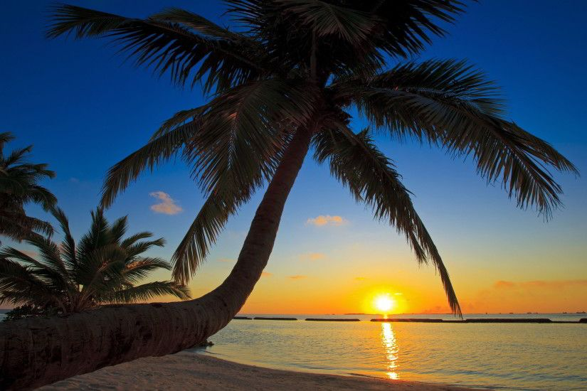 Beach Sunset Wallpaper 5576