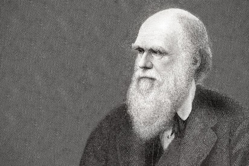 Charles Darwin Wallpaper | Latest Hd Wallpapers