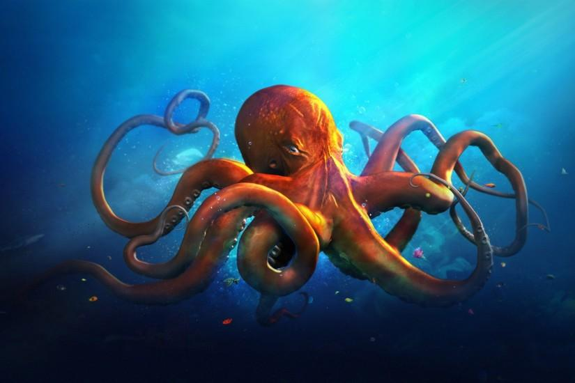 Octopus Cartoon Wallpapers HD Pictures