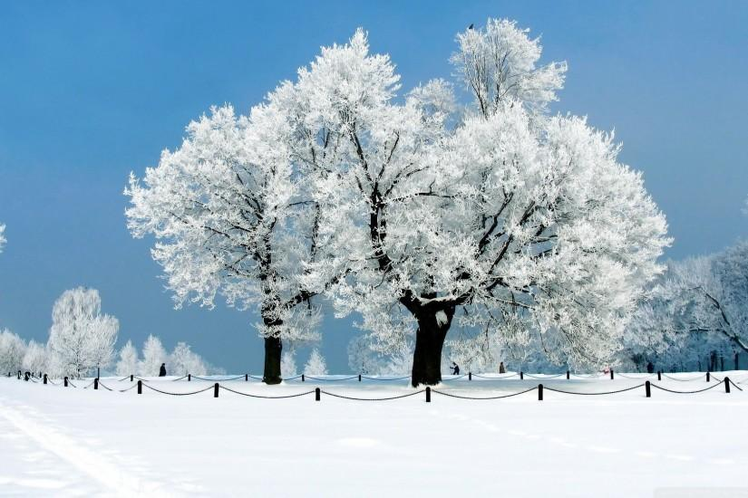 Winter Wallpaper 1920x1080 Backgrounds 47070 HD Pictures | Top .