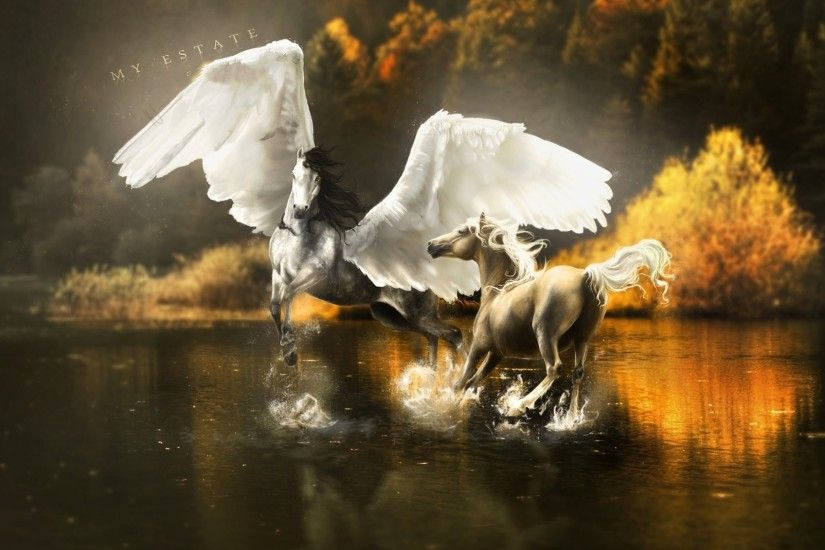 fiction horse art pegasus wings water spray reflection tree