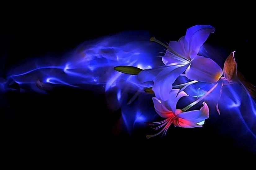 #6688EE Color - Blue Smoke Flowers Beauty Line Flower Picture High  Resolution for HD 16