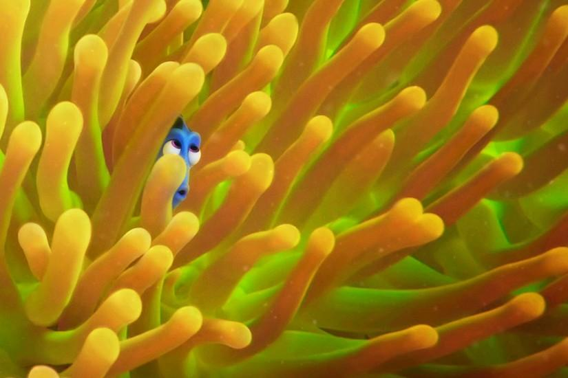 Finding Dory Wallpapers