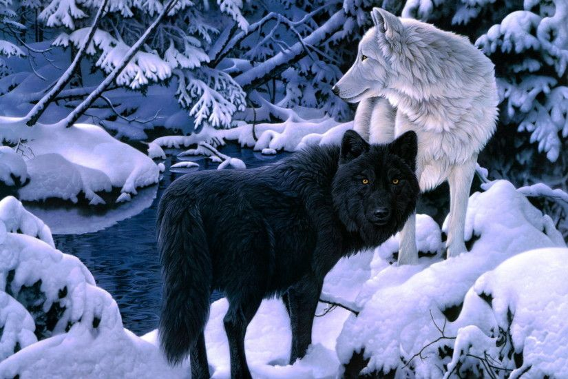 Wolf Wallpapers And Backgrounds Hd #18182 Wallpaper | Wallpaper hd