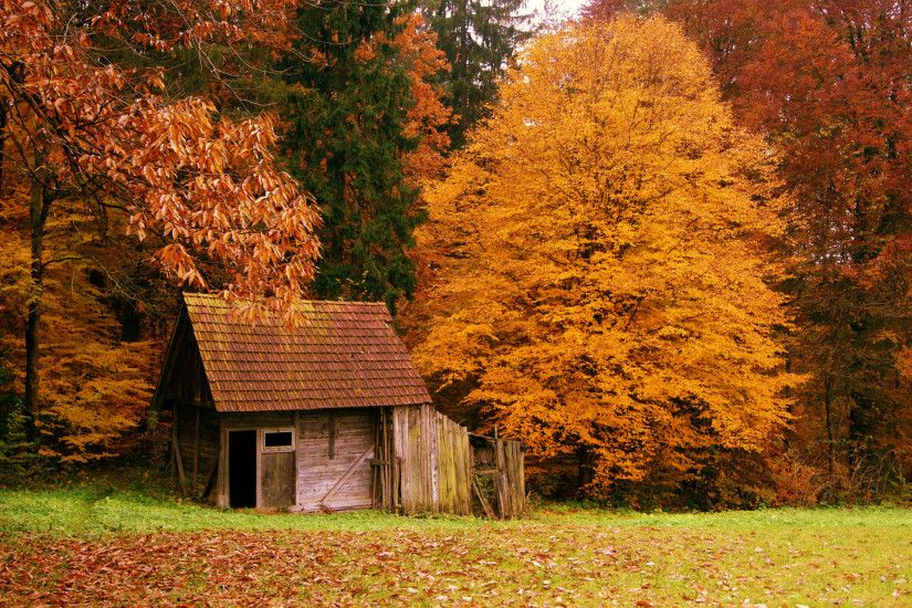 autumn 1 buildings 1 fall 1 forest 1 landscapes 1 nature 1 scenery 1 .