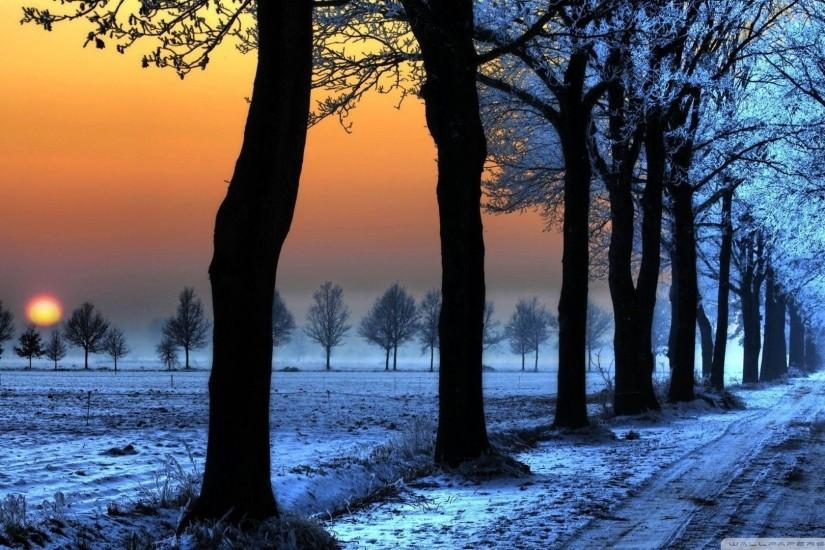 Winter Nature Wallpaper Phone