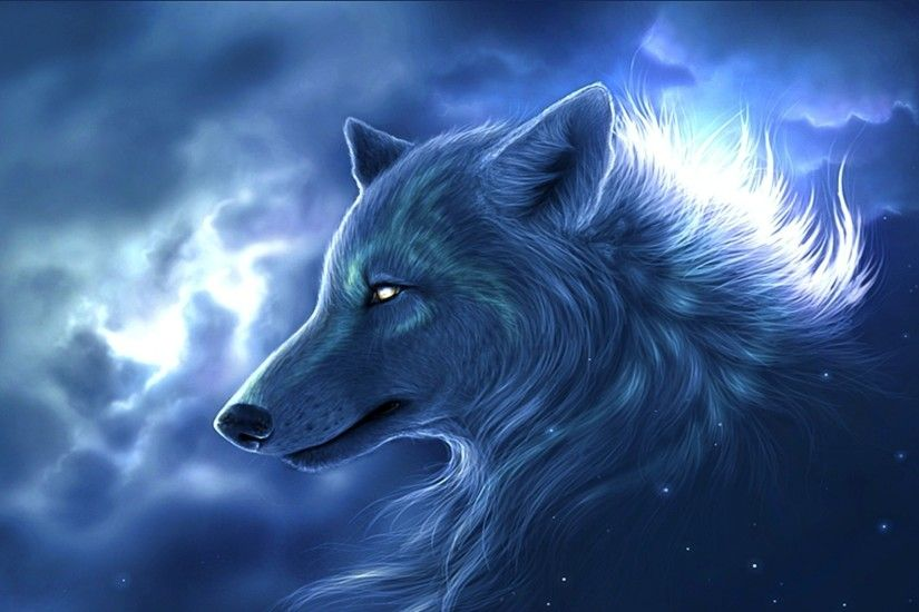 Animals Wolf WallpapersImages Pictures Of Beautiful the Wolf HD Wallpaper