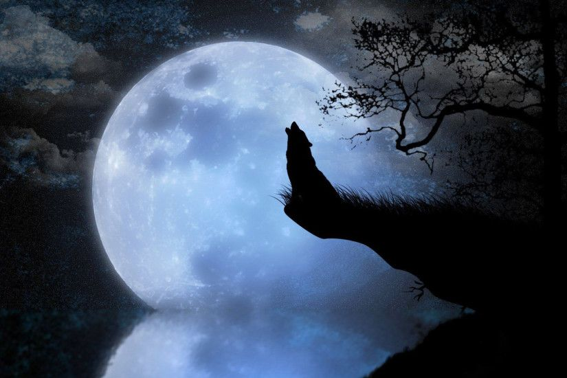 Howling wolf HD Wallpaper 1920x1080