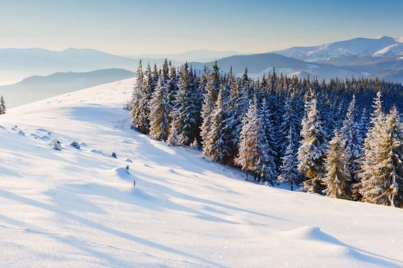 nature winter snow christmas tree tree mountain winter snow background  wallpaper widescreen full screen widescreen hd