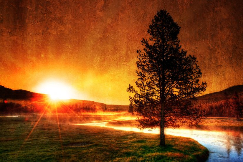 Sunrise in Yellowstone wallpaper