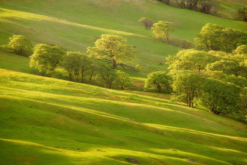 Green hills wallpapers and stock photos