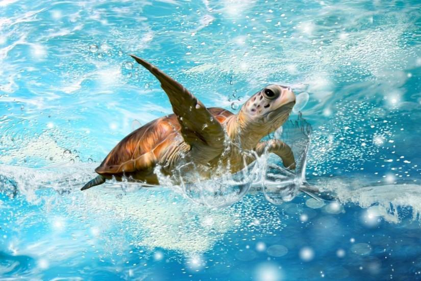 6 Sea Turtle Wallpapers | Sea Turtle Backgrounds