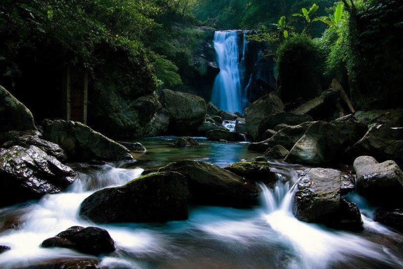 Forest Waterfall Wallpaper 34061