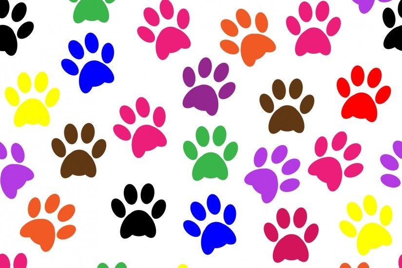 Paw Prints Colorful Wallpaper