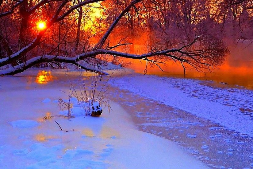 Preview wallpaper winter, sunset, evening, branches, tree, pond, cold,