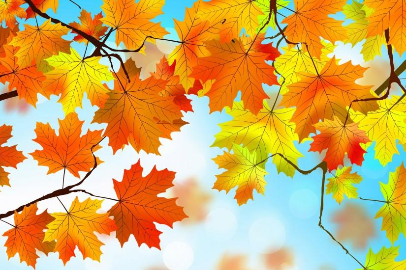 Autumn Leaves Wallpapers HD for Desktop Background Wallpaper