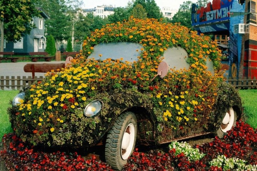 Flower Power Beetle