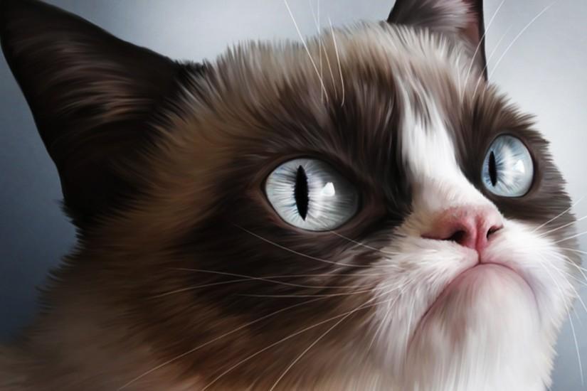 Grumpy Cat wallpaper ·① Download free stunning HD ...