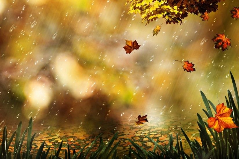Artistic - Fall Season Nature Leaf Wallpaper