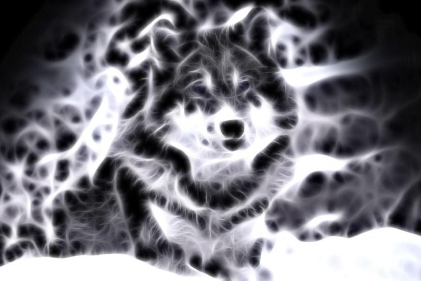 Wallpapers For > Cool Animal Wallpaper Light Wolf
