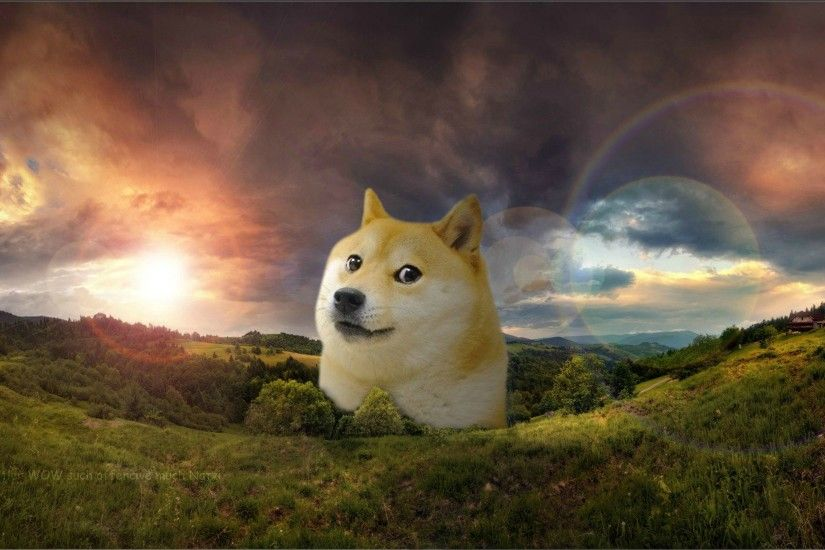 friend of mine asked me to make him a doge-wallpaper. Little does he