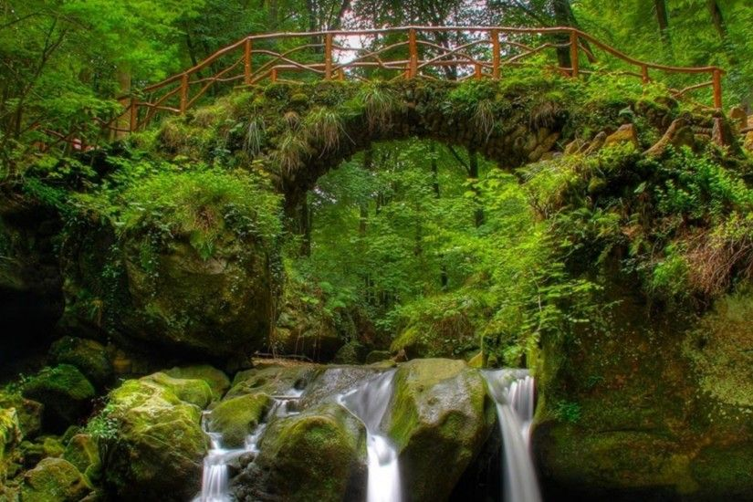 Forest Waterfall and Bridge