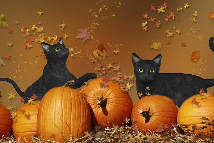 cool cute halloween wallpaper 1920x1080
