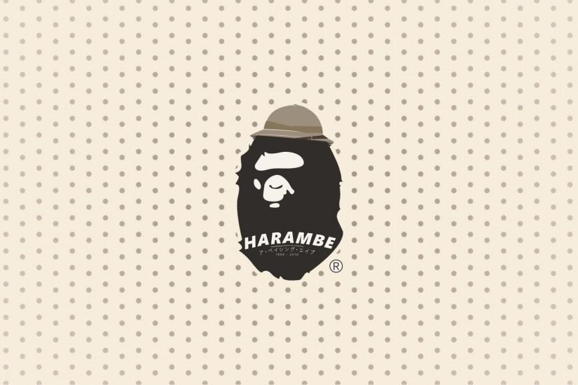harambe wallpaper 1920x1080 for ipad