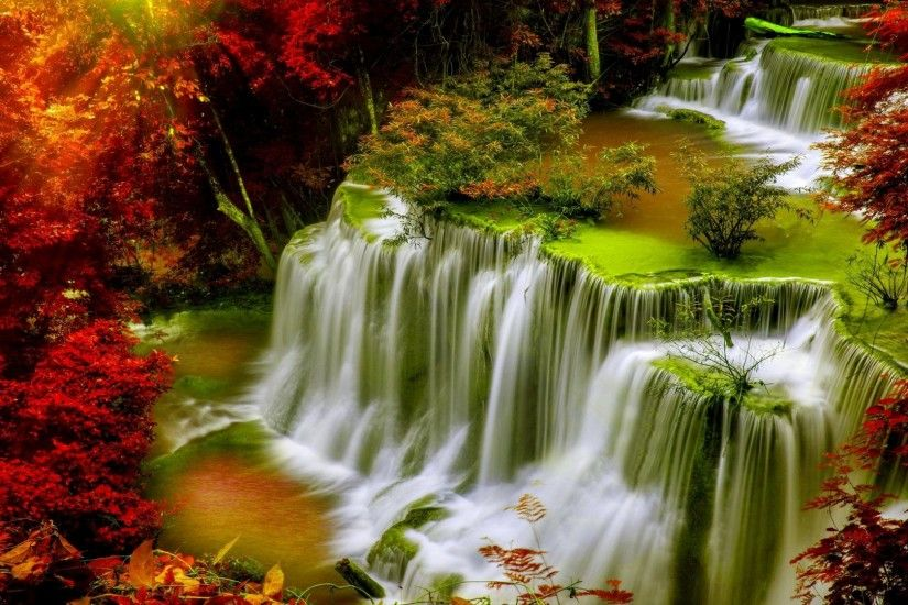 Hd Nature Wallpapers For Pc Full Screen 61 Wallpapers