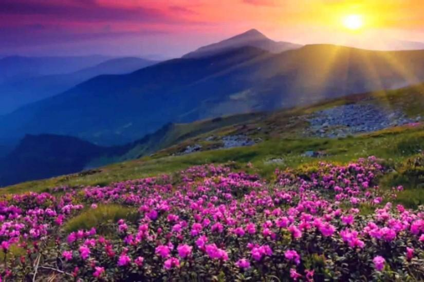 63+ 4K Nature Wallpapers ·① Download Free HD Backgrounds For Desktop And Mobile Devices In Any