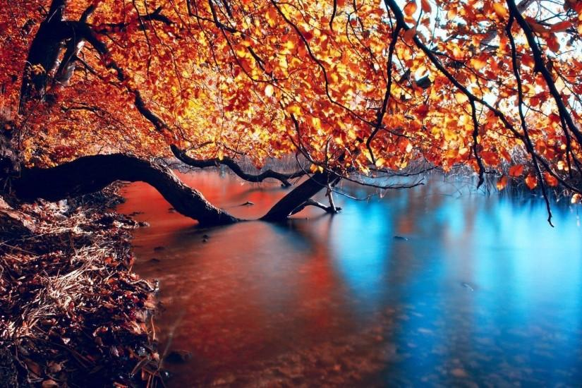 Autumn Lake | HD Wallpapers Pulse