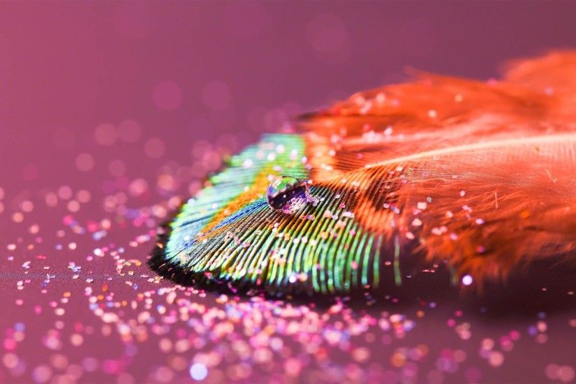 Pink peacock feathers background - photo#13